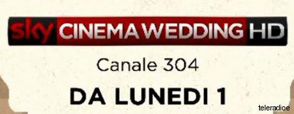 sky-cinema-wedding
