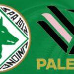 Avellino-Palermo diretta Raisport 26 maggio